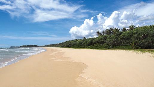 Centara Ceysands Resort & Spa Sri Lanka   Vacations & Travel