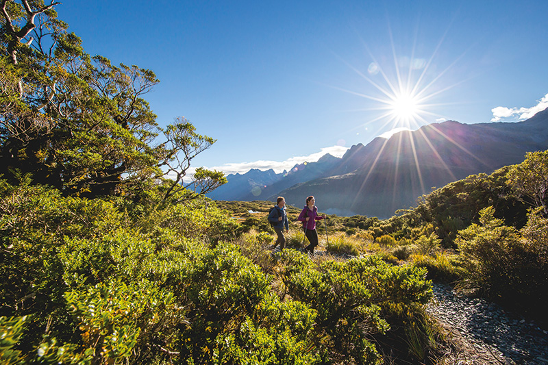 Vacationsmag_nz_8525-Routeburn-Track-Fiordland-Miles-Holden