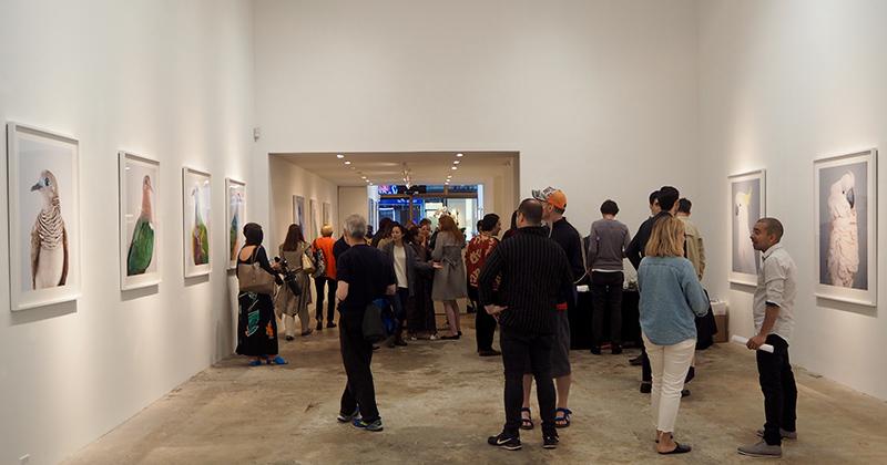 The Olsen Gruin gallery
