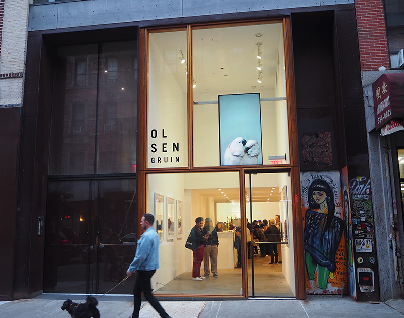The Olsen Gruin gallery, Manhattan, New York City, New York