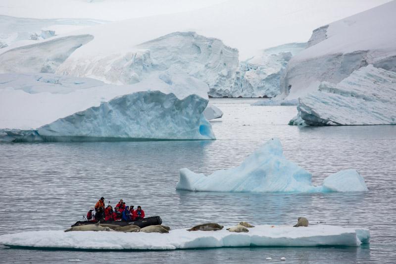 Kayaking, Antarctica, Arctic, cruise