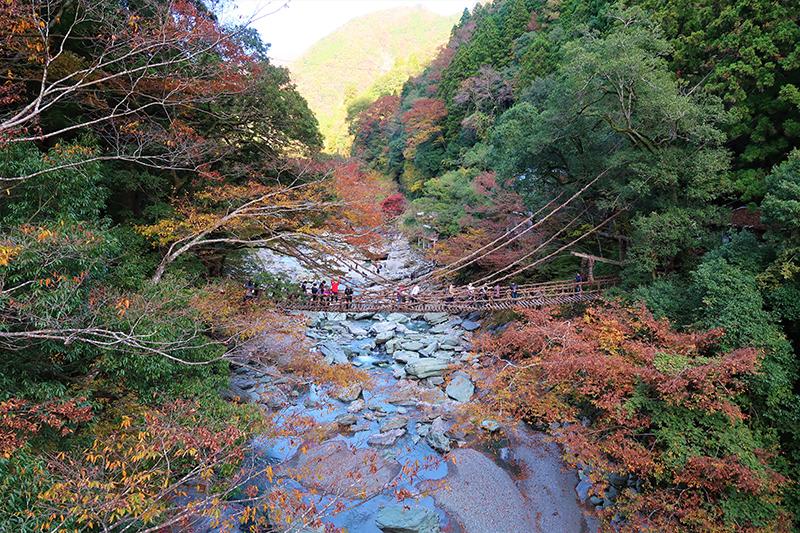 Vine bridge, Iya River, Tokushima, Japan