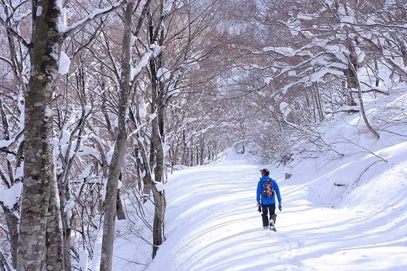 Walk Japan, walking tour, Japan