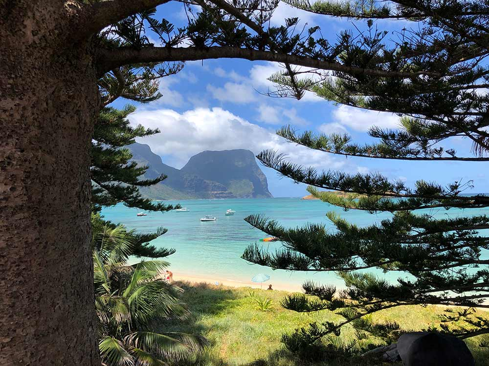 Lord Howe Island, Pinetrees Lodge, Destination NSW