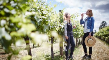 Cofields Winery
