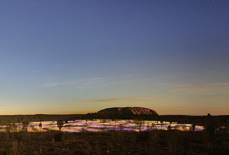 Uluru, Ayers Rock, Field of Light