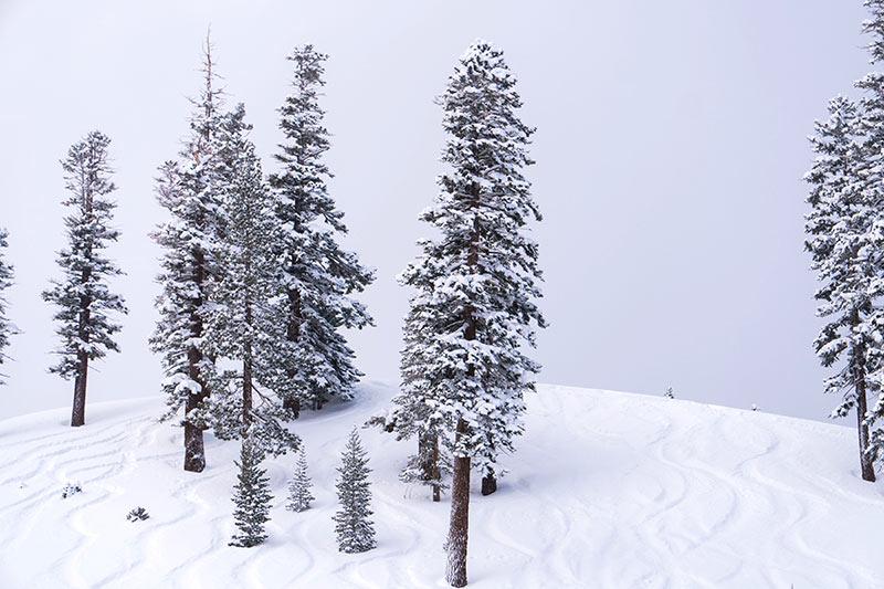Californian, skiing, snowboarding, skiing holiday, snowboarding holiday, best skiing destination in the US, Mammoth, log fires, skiing, snow, powder, mammoth mountain