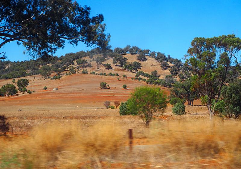 Avon Valley, Australia, Indian Pacific