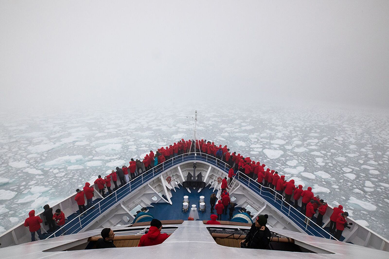 Cruise line, Silversea, Silversea Expeditions, Luxury, Whale Sharks, North Pole, Adventure, Bucket List