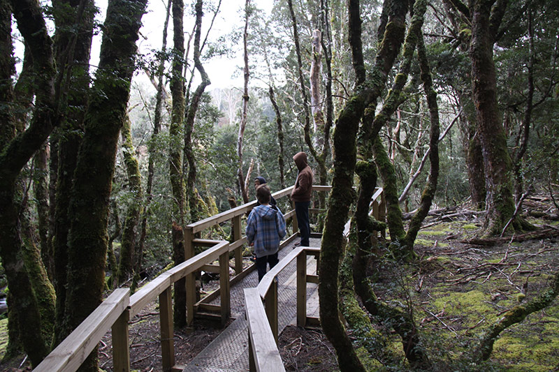 Cradle Mountain, Peppers Lodge,