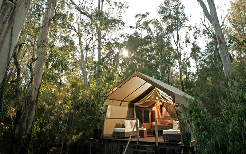 Paperbark Camp, Glamping Specials, Spring accommodation specials, NSW South Coast