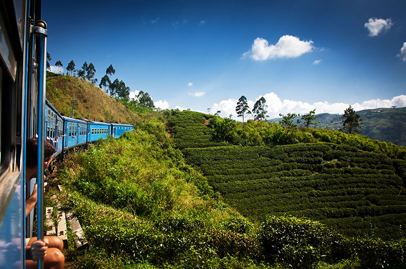 TravelbaySri Lanka Private Tours, Train rides in Sri Lanka, Sri Lanka train rides, Sri Lanka, NanuOyato Kandy, TravelBay Tours of Sri Lanka