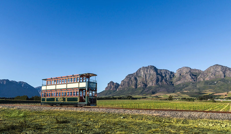 Cape Town, South Africa, Greater Kruger National Park, Ilios Tours, Avril O'Connor, District Six, District 6 Museum, Victor Verster Prison, Cape of Good Hope, Franschhoek Wine Tram, Luxury Signature Safari Special, Visit South Africa
