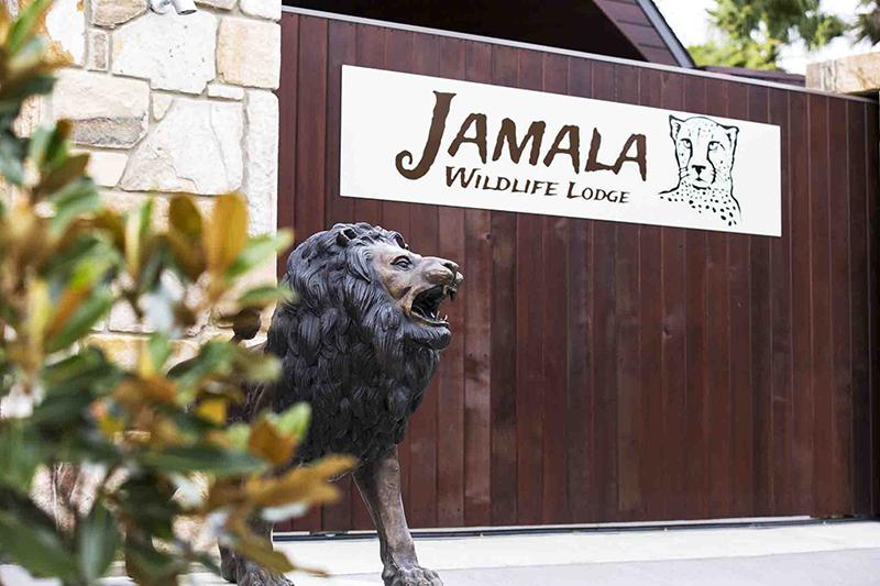 108_ADV_Jamala-Lion-Logo.jpg