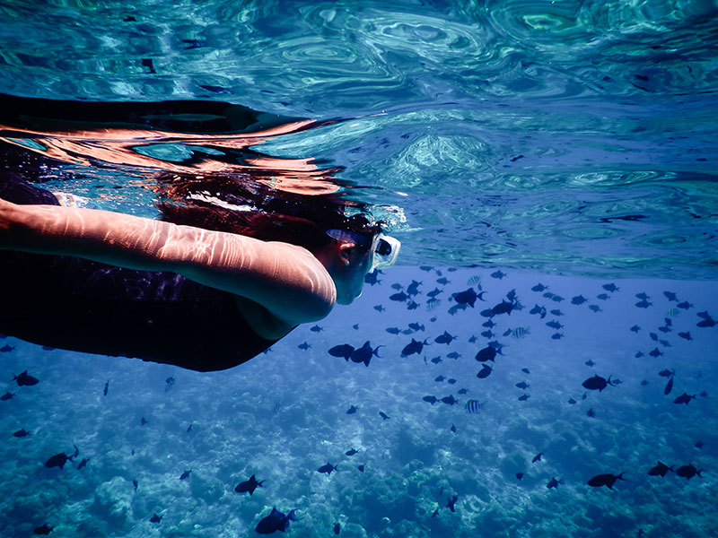 Encounters of the Maldivian kind