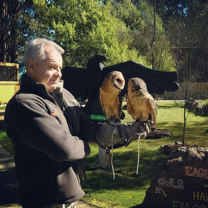 Winged wonders: raptor conservation in Tasmania