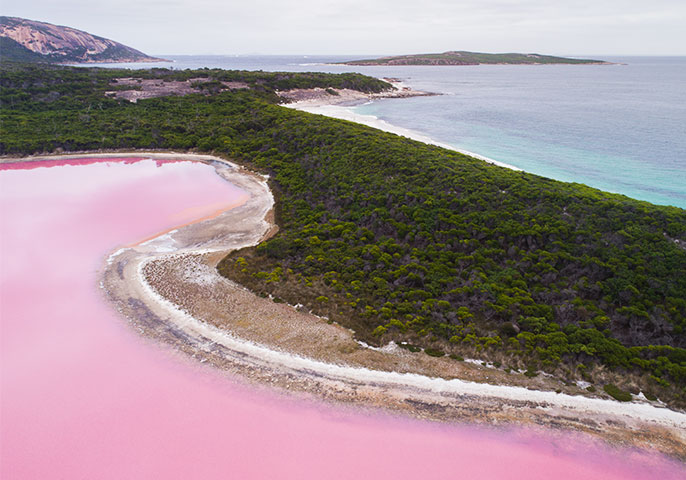 The one time to cruise to Lake Hillier
