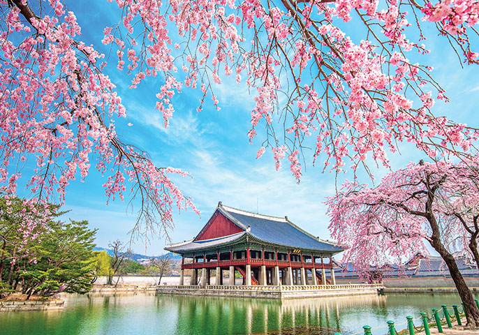 Why South Korea is Asia's undiscovered gem you need to visit | Vacations & Travel