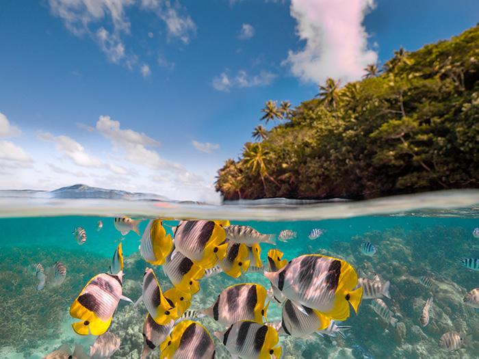 Tahiti Photo Essay