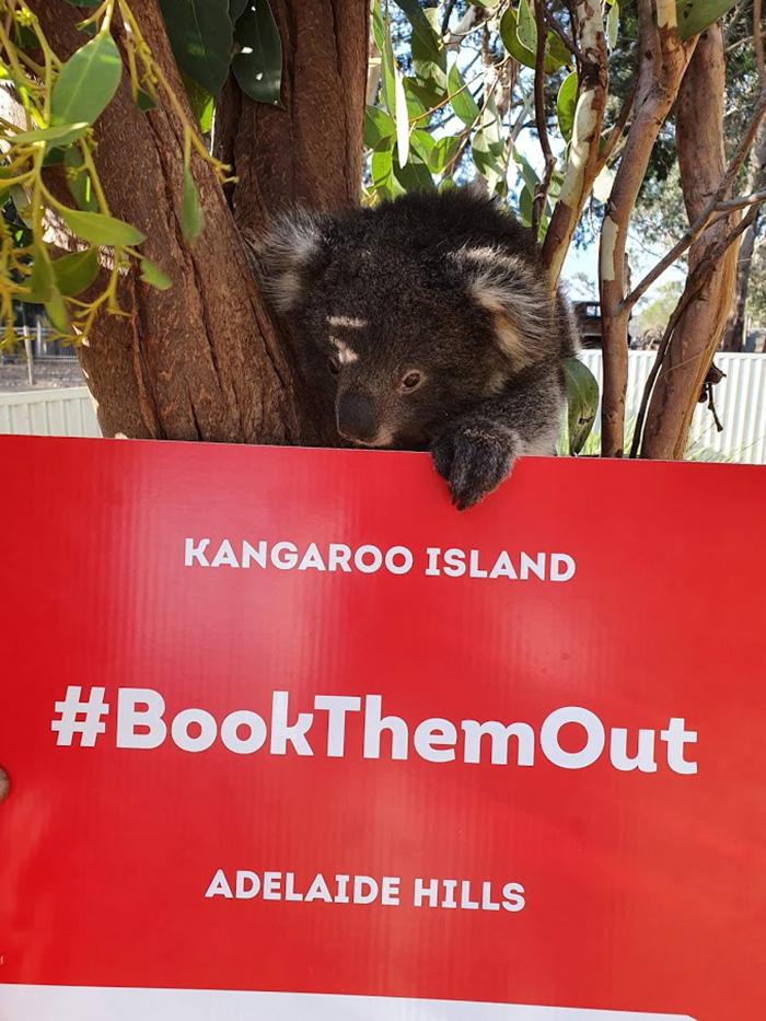 Rebuilding Australian Tourism #BookThemOut