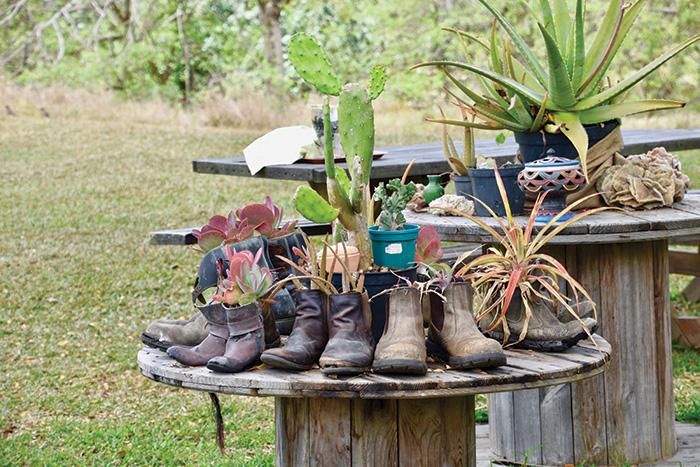 New Caledonia: La Ferme de Nemeara. Image: Carla Grossetti