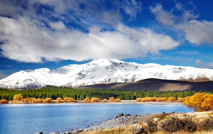 New Zealand travel: virtual experiences