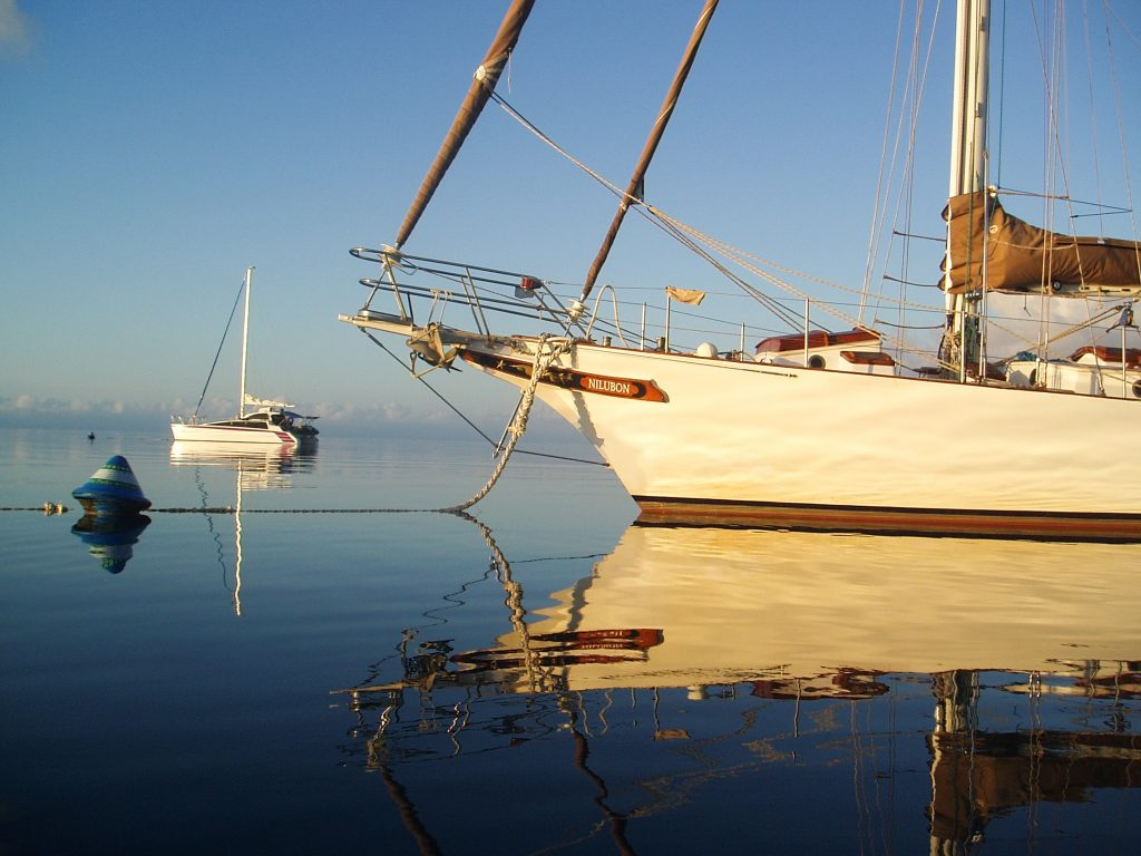 Sailing is the new green