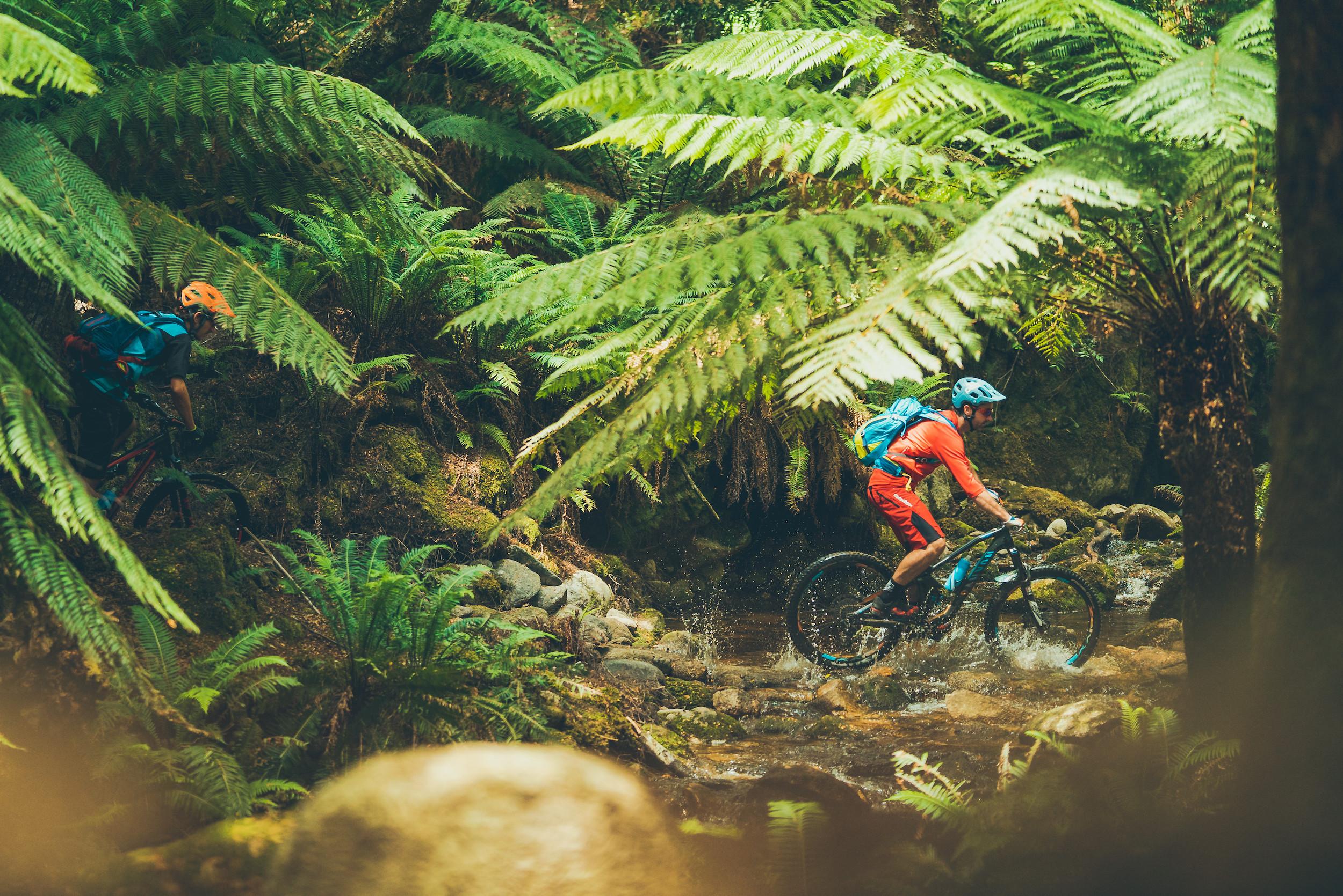 Blue Derby Mountain Bike Trails
