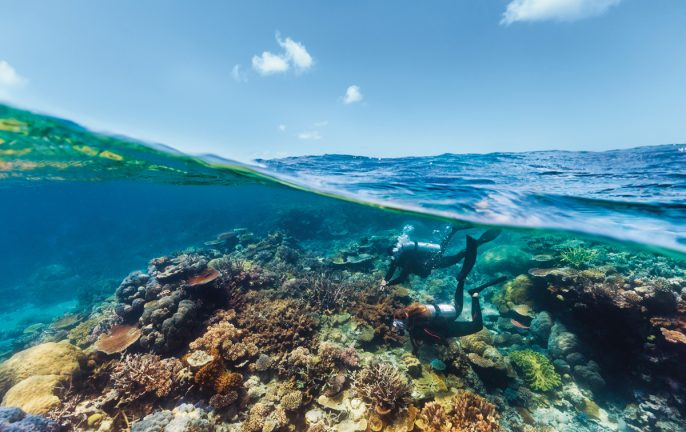 Best scuba diving holidays Australia