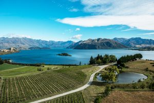The Rees Heli-wine tour