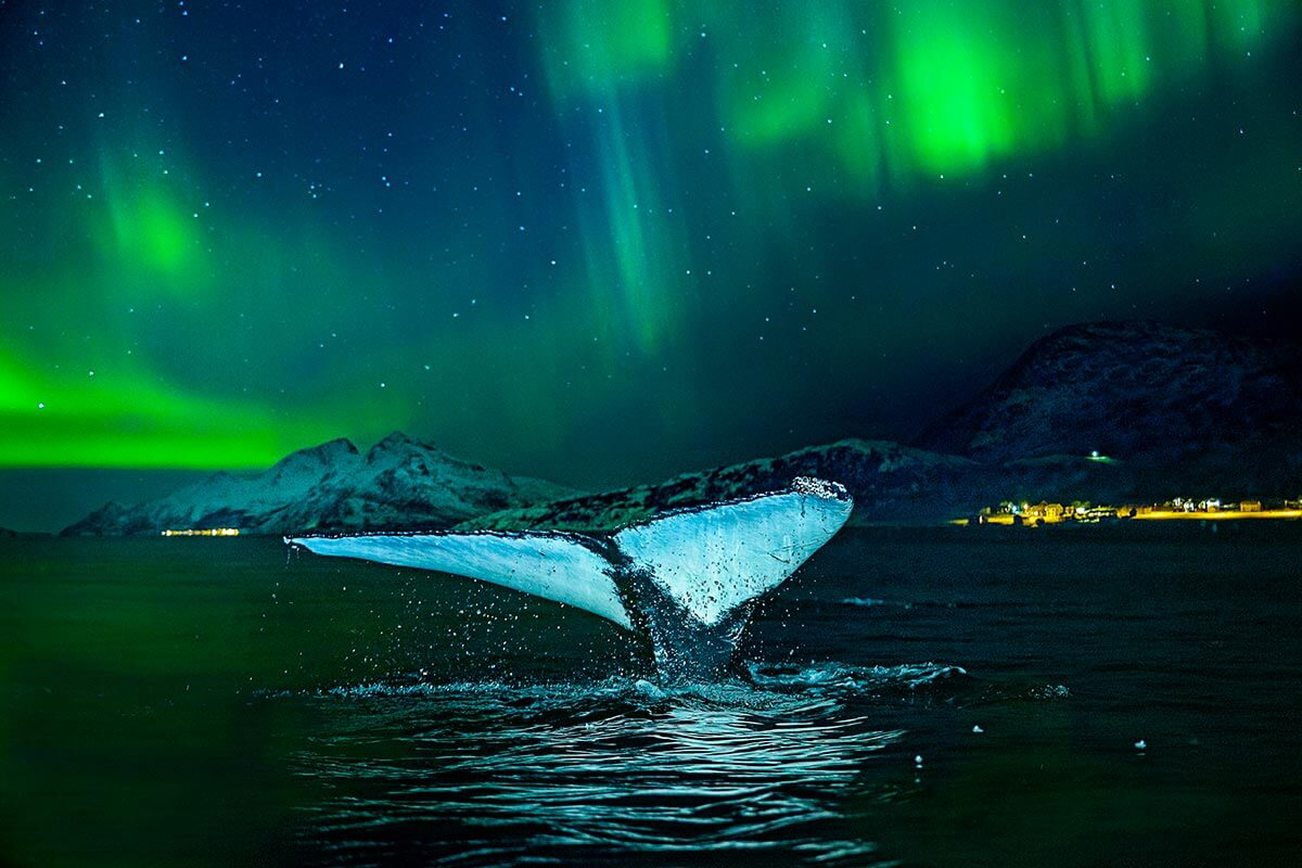The dazzling Northern Lights over Norway