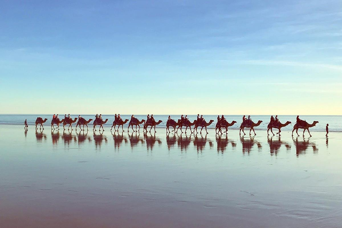 A local guide to the Kimberley: Cable Beach Sunset Camel Ride