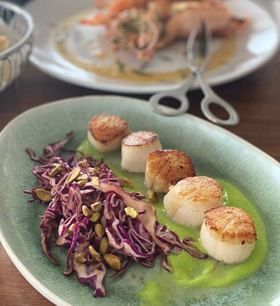 Capesante, seared scallops with a perfect golden-brown crust served on a bed of green pea puree