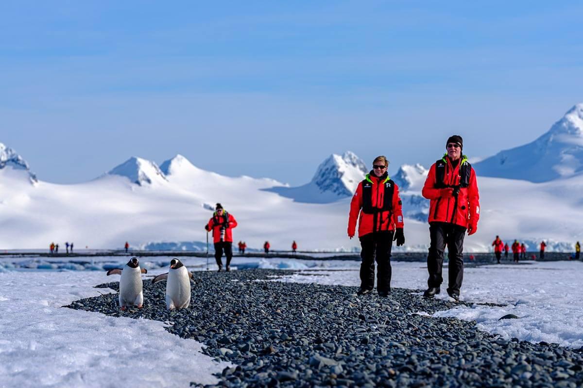 Landing MS Roald Amundsen