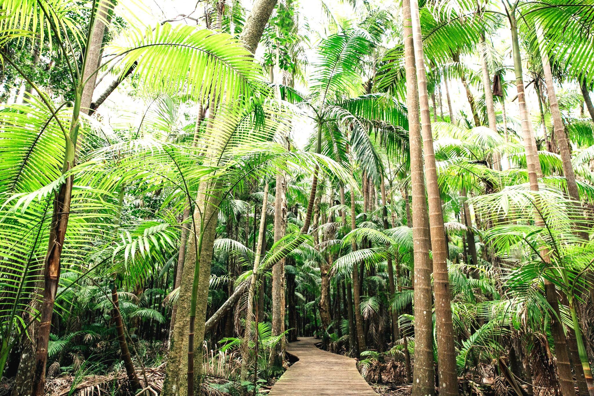 resorts Australia