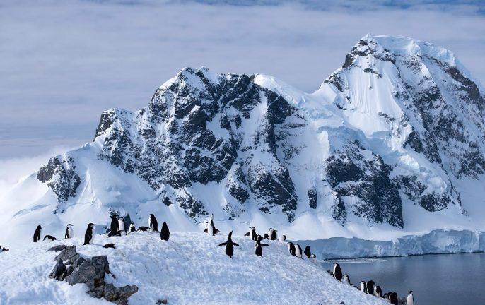 Orne Harbour, Antarctica