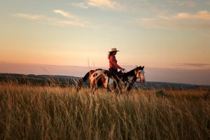 Horseback riding in Theodore Roosevelt National Park