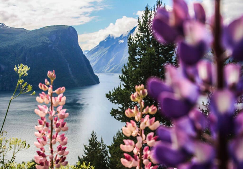 Attractions along the Norwegian coast: Geirangerfjord, Norway © Supplied/Hurtigruten
