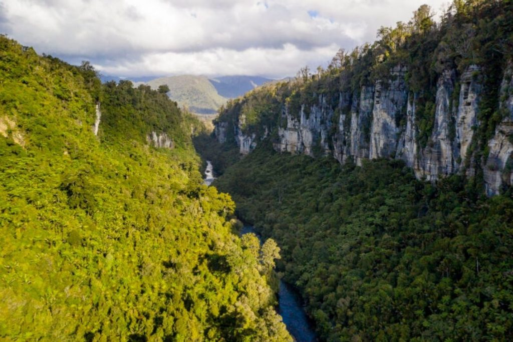 Paparoa Track New Zealand