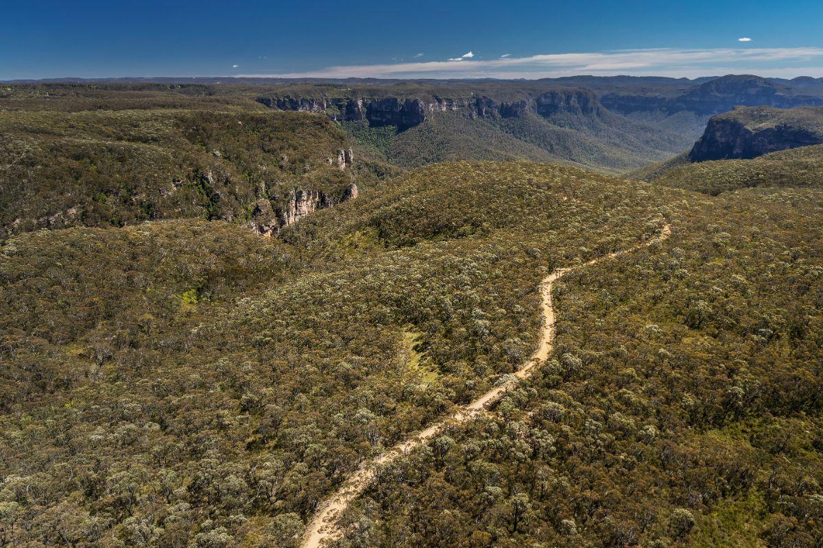 Sydney bush walks