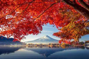Japan is a travel bubble option for Australia