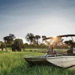 Wildlife abounds around Sanctuary Chobe Chiwero